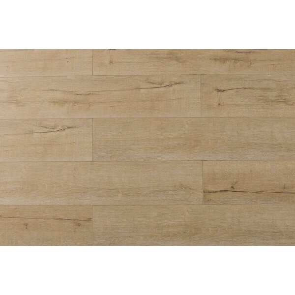 Jeramiah 7 x 48 x 12mm Oak Laminate Flooring in Century by Serradon