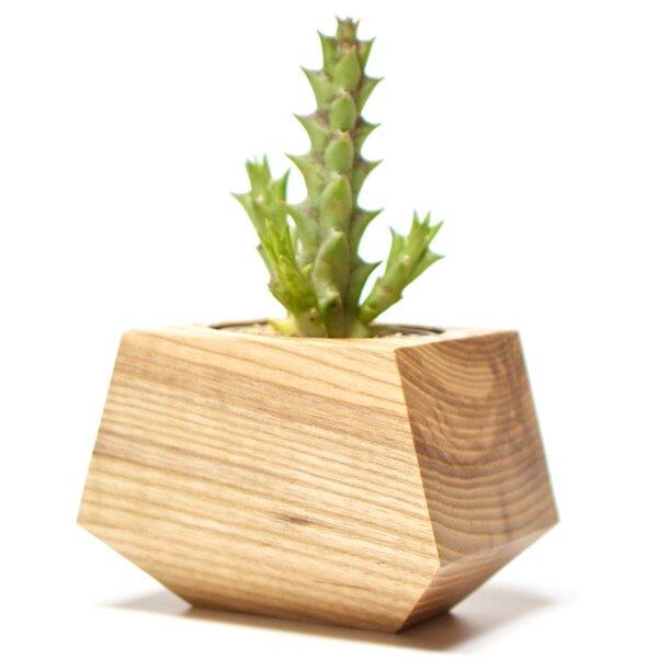 Boxcar Ash Pot Planter by Revolution Design House