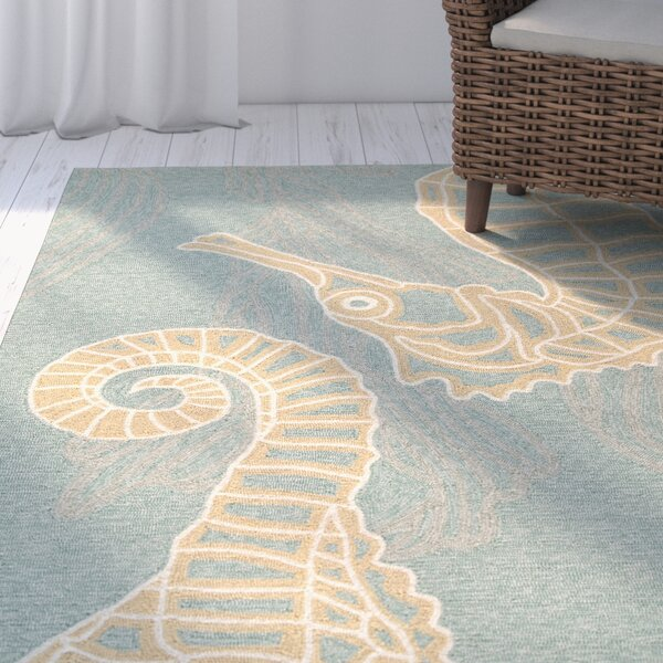 Ismene Hand-Hooked Canal Blue Indoor/Outdoor Area Rug by Highland Dunes