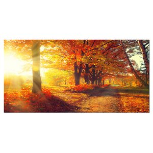 'Autumnal Trees in Sunrays' Photographic Print on Wrapped Canvas by Design Art