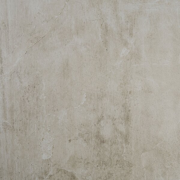 Rowe 24 x 24 Porcelain Field Tile in Vision by Itona Tile