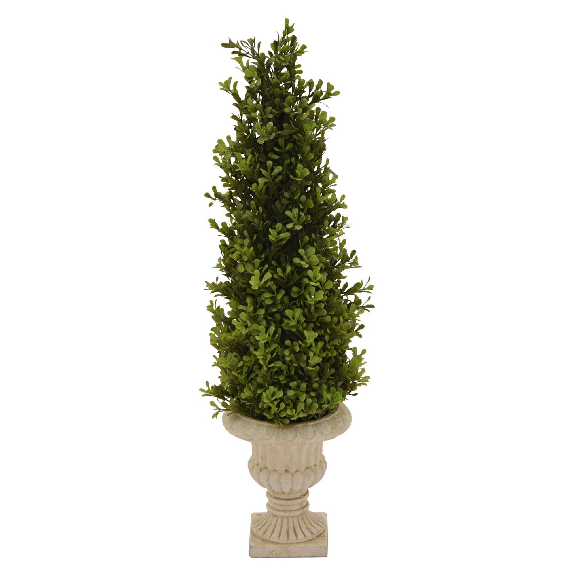 Charlton Home Faux Boxwood Topiary In Pot Wayfair
