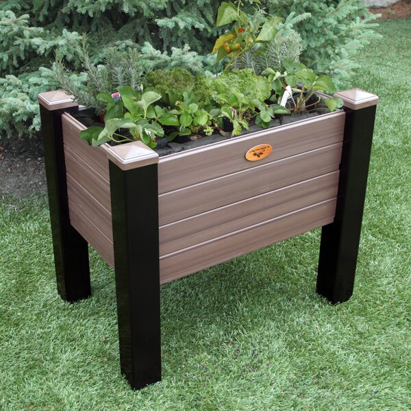 Maintenance 4 ft x 2 ft Plastic Raised Garden by Gronomics