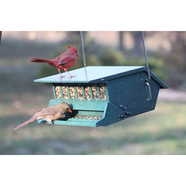 Hopper Bird Feeder by Woodlink