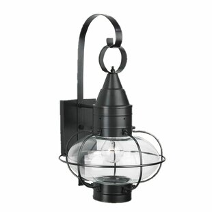 Best Price Withyditch 1-Light Outdoor Wall Lantern By Breakwater Bay