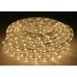 Inexpensive 5 ft. LED Rope Light By The Holiday Aisle