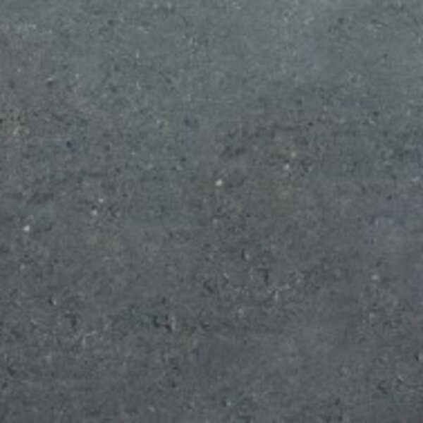 Pietre del Nord 12 x 24 Porcelain Field Tile in Gray by Emser Tile