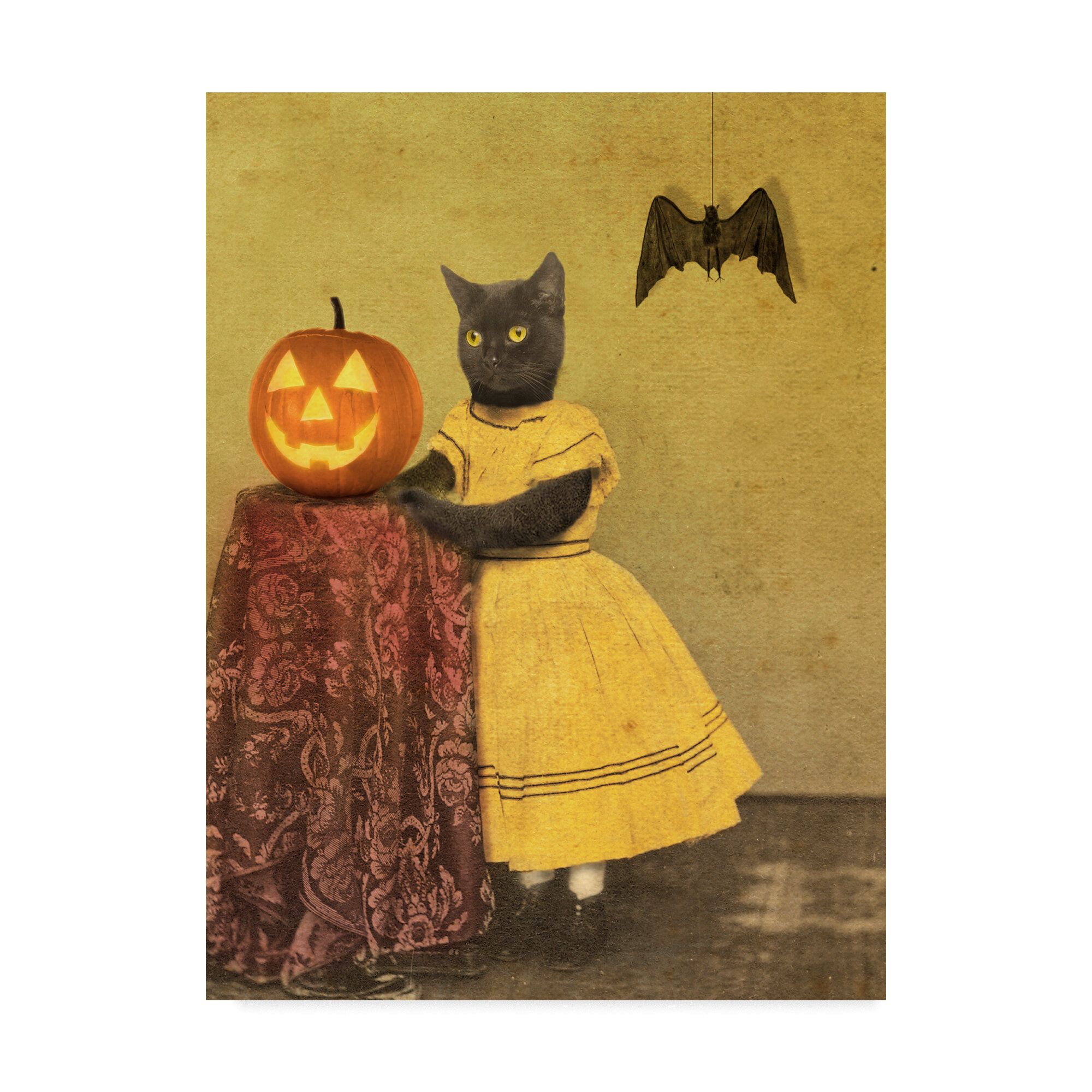 Trademark Art \'Pumpkin and Cat\' Graphic Art Print on Wrapped Canvas ...