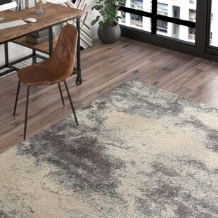 Odyssey Gray/Ivory Area Rug by Trent Austin Design