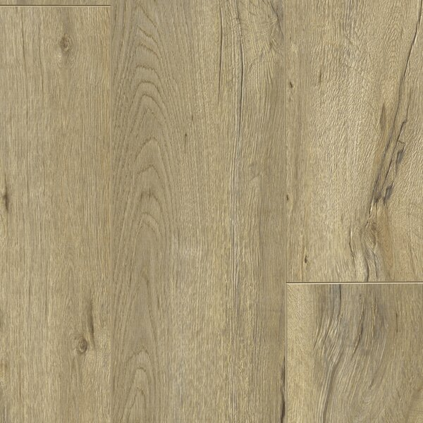 Essence 8 x 48 x 12mm Laminate Flooring in Newport Sand by Dyno Exchange