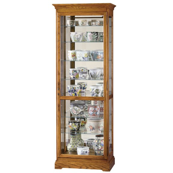 Broadnax Lighted Curio Cabinet by Darby Home Co