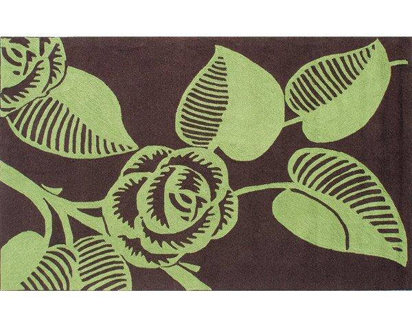 Noelle Hand-Hooked Green/Brown Indoor/Outdoor Area Rug by Threadbind