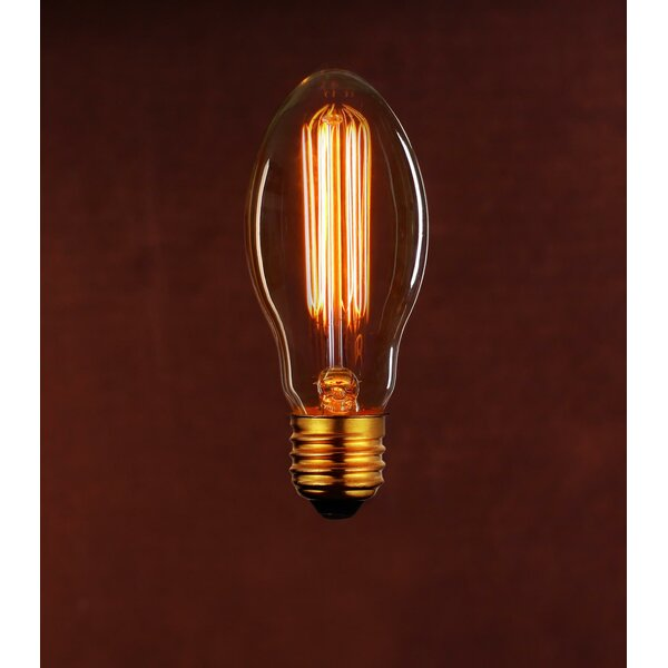 Incandescent Light Bulb (Pack of 6) by String Light Company