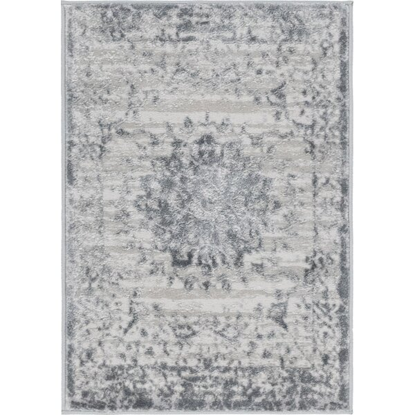 Delarosa Gray Area Rug by Bungalow Rose