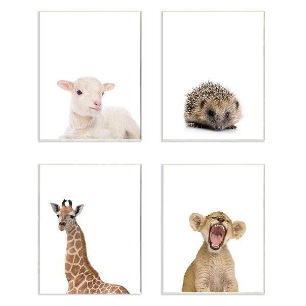 4 Piece Baby Animal Studio Portrait Lamb Hedgehog Giraffe Lion Wall Plaque Set by Stupell Industries