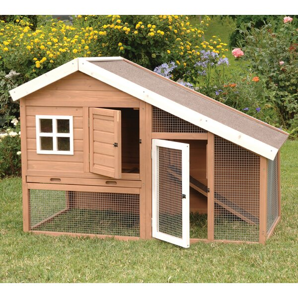 Balto Cape Cod Chicken Coop by Tucker Murphy Pet