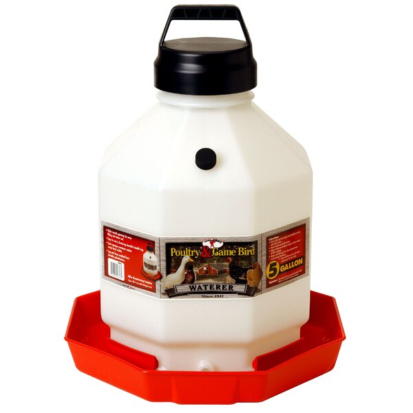 Plastic Poultry Waterer in Red by Miller Mfg