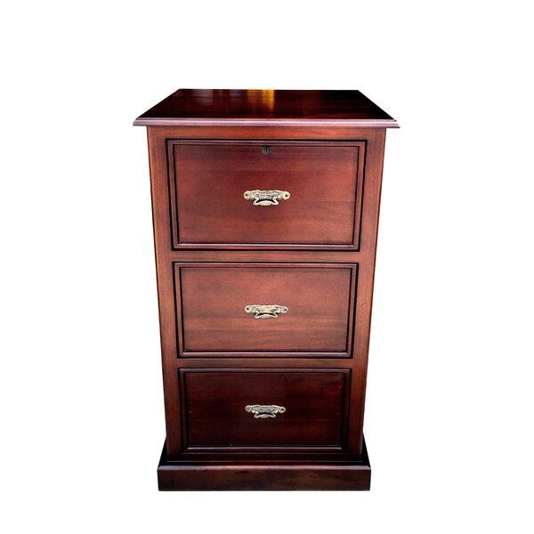 Rosenbaum Storage Cabinet by Darby Home Co