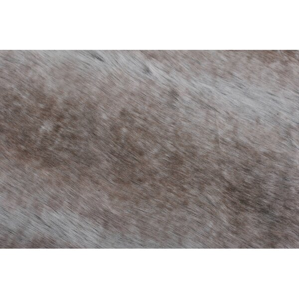 Nola Taupe Area Rug by Millwood Pines