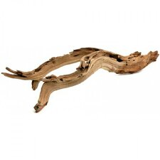 Decorative Natural California Driftwood Branch