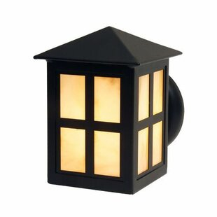 Find Old Faithful 1-Light Outdoor Sconce By Steel Partners