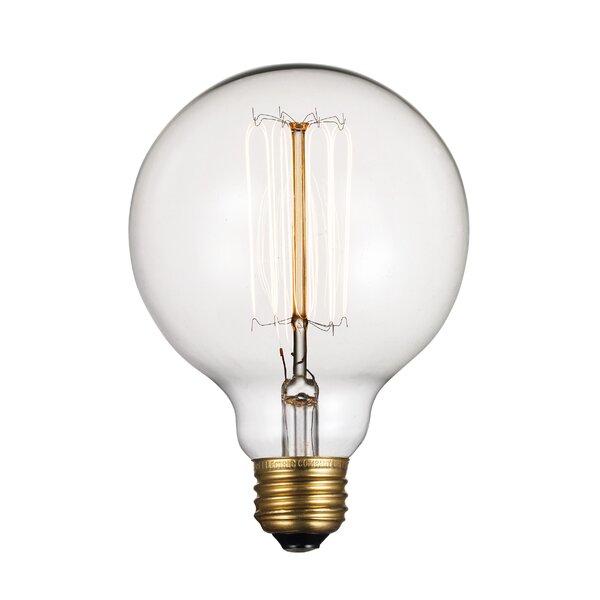 60W Incandescent Vintage Filament Light Bulb by TransGlobe Lighting