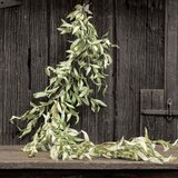 18 Wide Ten Waterloo Flocked Artificial Christmas Eucalyptus Wreath on Twisted Vine Base