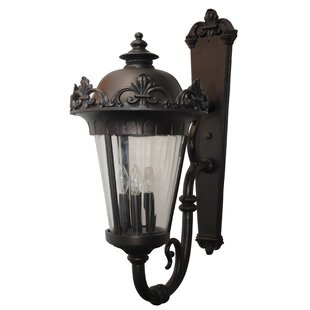 Read Reviews Petrey 4-Light Outdoor Sconce By Alcott Hill