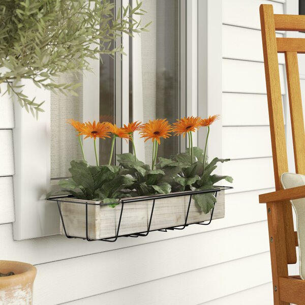 Tiana Adjustable Flower Rectangular Metal Window Box Planter by Gracie Oaks