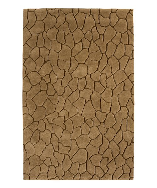 Aria Earth Brown Area Rug by Dynamic Rugs