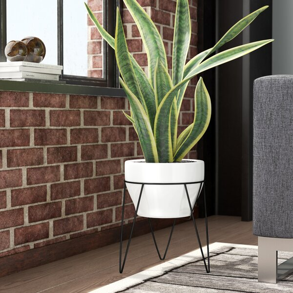 Crim Ceramic Pot Planter by Orren Ellis