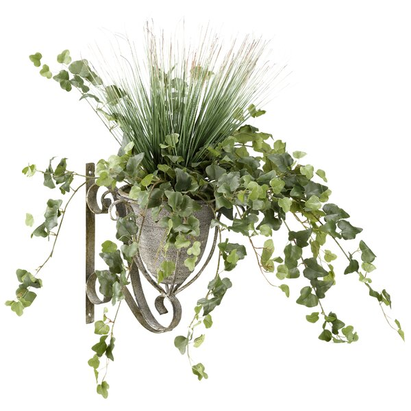 Onion Grass Metal Wall Sconce Ivy Plant in Planter by Darby Home Co