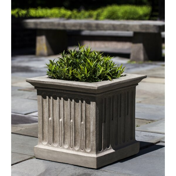 Jeanetta Fluted Cast Stone Pot Planter by Darby Home Co