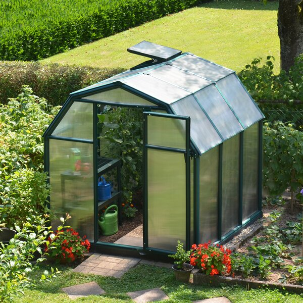 EcoGrow 2 Twin Wall 6 Ft. W x 6 Ft. D Greenhouse by Rion Greenhouses