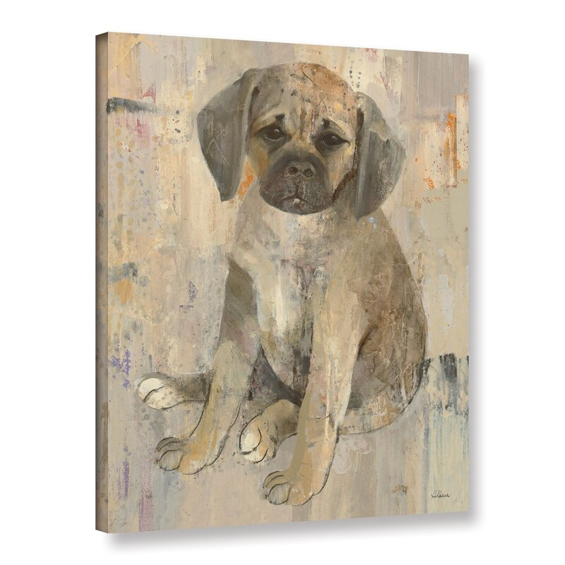 Paco V2 Gallery Wrapped Canvas