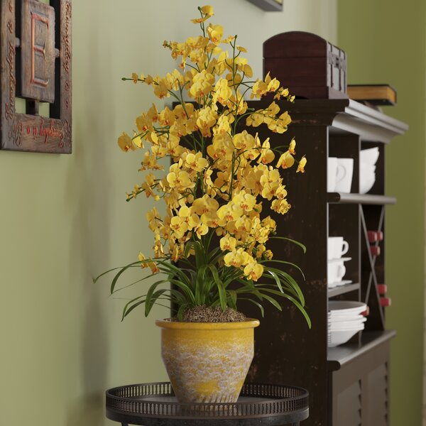 Triple Dancing Lady Silk Orchid Flowers in Yellow by Three Posts