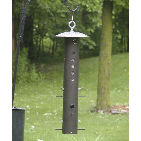 Bear Proof Tube Bird Feeder by Birds Choice