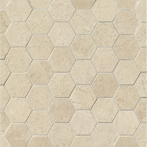 El Dorado 2 x 2 Porcelain Hexagon Mosaic Tile in Oyster by Grayson Martin