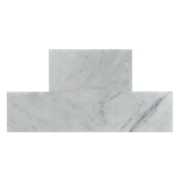 3 x 6 Natural Stone Field Tile in Carrara by Mulia Tile