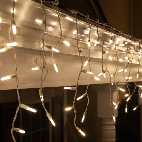 70 Twinkle M5 LED Icicle Light String by Wintergreen Lighting