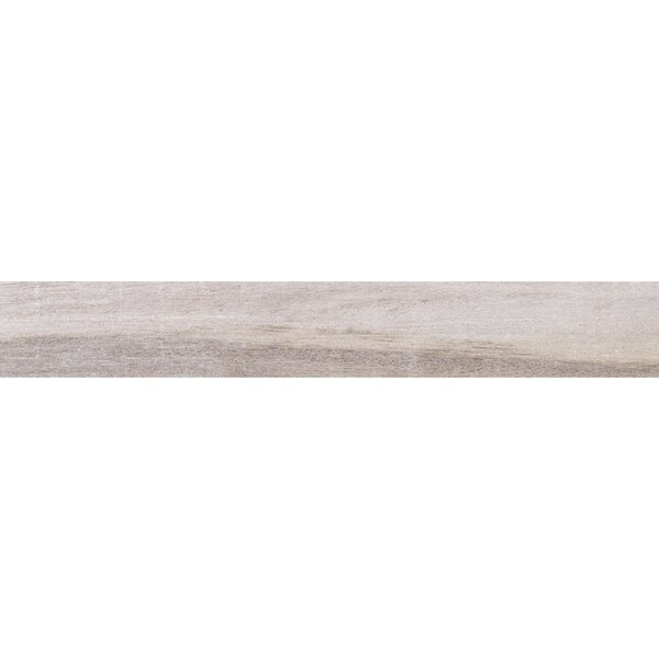 Acacia Valley 18 x 3 Porcelain Bullnose Tile Trim in Ash by Daltile