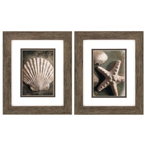Comber 2 Piece Framed Graphic Art Set by Beachcrest Home