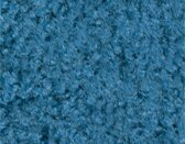Mt. St. Helens Marine Blue Area Rug by Carpets for Kids