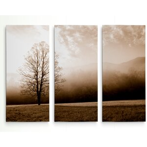 'Meadow Solace' Photographic Print Multi-Piece Image on Gallery Wrapped Canvas by Alcott Hill