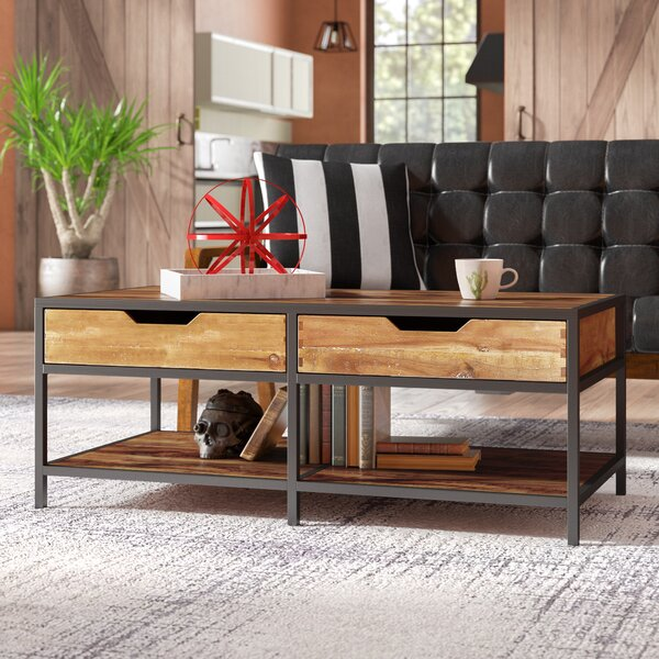 Ivana Solid Coffee Table With Storage By Trent Austin Design