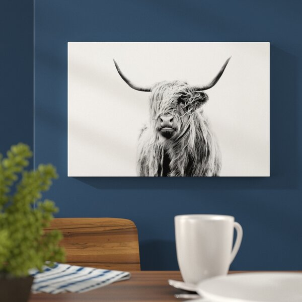 Portrait Of A Highland Cow Photographic Print By Mercury Row.