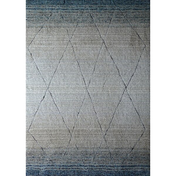 Hand-Tufted Blue/Beige Area Rug by Rug Factory Plus