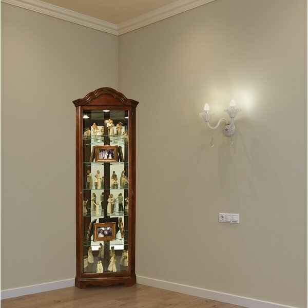 Brillion Curio Cabinet by Darby Home Co Darby Home Co