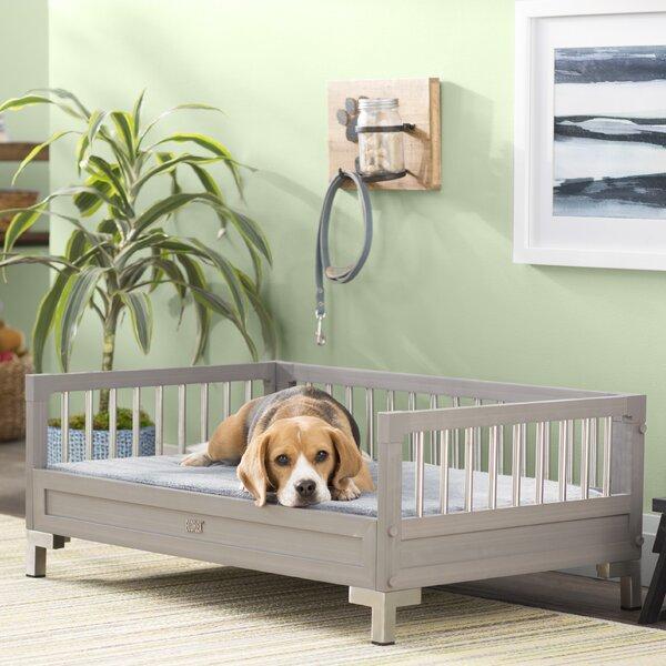 Dustin ecoFLEX Dog Sofa with Memory Foam Cushion b