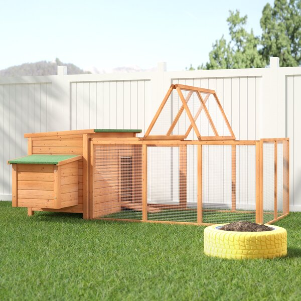 Auggie Chicken Coop by Archie & Oscar